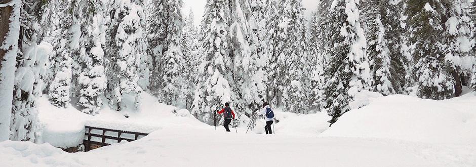 Cosa fare in montagna in inverno se non si scia: foto invernali