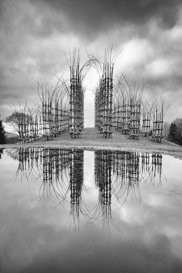 Cattedrale vegetale - di Mauro Bertolini - di Ranica (BG)